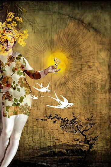 the sun by Catrin Welz-Stein