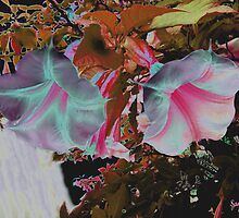 Colorized White trumpets by SANDRA BROWN