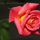 Happy Anniversary - Rose by Kay  G Larsen