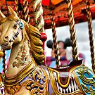 Carousel by Paul Thompson Photography