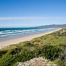 Bakers Beach by Gethin