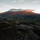Mount St Helens by Olga Zvereva
