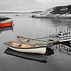 Canoes - Peggys Cove SC by Dave Law