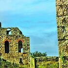 Old Tin Mine by Catherine Hamilton-Veal  ©