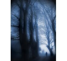 Watcher In The Woods Photographic Print