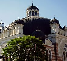 The Synagogue in Sofia by tonymm6491