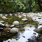 Cairns - Some part of a river. by Goggo