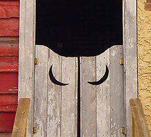 Them Saloon Doors in Texas by Ronee van Deemter