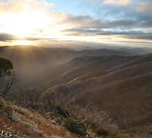 Last of the light, Mt Hotham, Australia by Michael Boniwell
