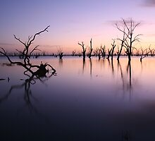 Lake Victoria Pre-Dawn, Australia by Michael Boniwell
