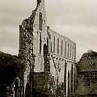 Jervaulx Abbey by newbeltane