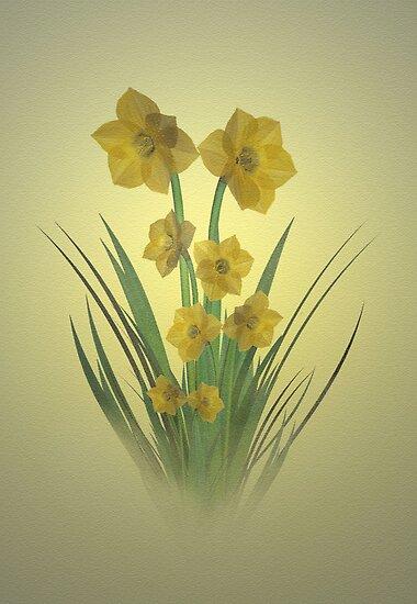 Daffodils by Dawnsky2