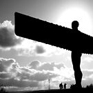 Angel of the North by Robson Photography