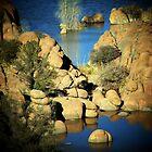Watson Lake, Prescott, AZ by Darlene Wilson
