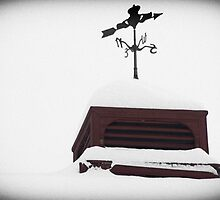 Weathervane by krysleighphoto