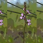 tri panel pink wildflowers by GrowingWild