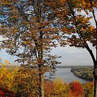 Niagara River in Autumn by ArianaMurphy