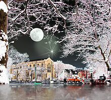 Winter fairytale  by LudaNayvelt
