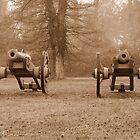 Revolutionary War Cannon's by Timothy Gass