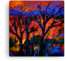 Landscape...The Journey...Out There Canvas Print