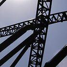 Metal Web by Garfungus
