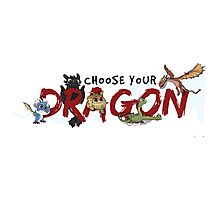 Choose your Dragon! Photographic Print