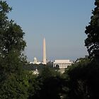 Capitol View by DLR4
