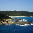 Scenic Beauty - Wyrrabalong National Park, Central Coast, NSW, Australia.  by Samantha  Goode