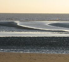 Tidal sandbanks, Camber Sands, Dec26th 2008 by richalfa156