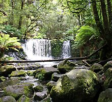 Horseshoe Falls - Mount Field National Park, Tasmania by Ruth Durose