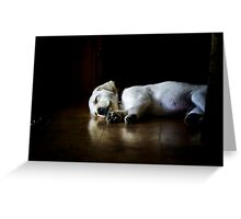 In Dreams by Roy Orbison Greeting Card