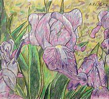 Purple Irises by Alexandra Felgate