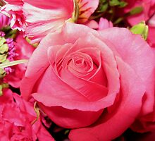 Pink is My Favorite Color by Rebecca Bryson
