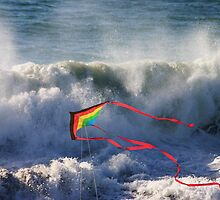 Kite in Surf by Barbara  Brown