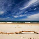 Stranded on Stradbroke by Ken Wright