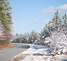 Road To A Winter Wonderland by madman4