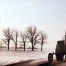 Winter Drive by jpryce