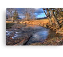 Scene By The Brook Canvas Print