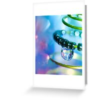 Water and Spring.  Greeting Card