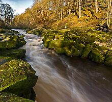 The Strid, Wharfedale by Steve  Liptrot