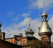 University of Tampa 1 by Bob Moore
