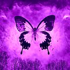 Purple Butterfly by Scott Mitchell