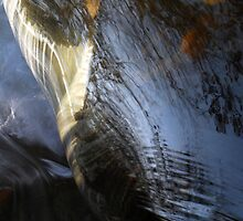Shiny armour of water by Mykola