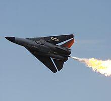 F-111 Dump and Burn by Mathew Wilson
