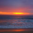 A New Day Changes Everything by Of Land & Ocean - Samantha Goode