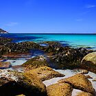 Wine Glass Bay by bidkev