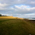 Dunstanburgh Castle, Northumberland 1 by rafolio