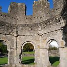 Mellifont Abbey by Paula Cowley