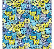 Sketch colorful cat pattern Photographic Print