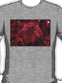 Impossibly Pink - Impressions Of Spring T-Shirt